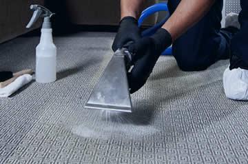 Limpeza Sofá Horto do Ipê Dr Lava Seco
